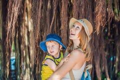 妈妈和儿子越南旅客的是在背景美丽的树与气生根 免版税库存图片