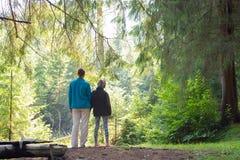 妈妈和女儿在一个密集的绿色森林里 库存照片