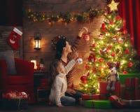 妈妈和女儿装饰圣诞树 免版税库存照片