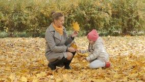 妈妈和婴孩在公园收集黄色叶子 妈妈亲吻她的女儿 免版税库存照片