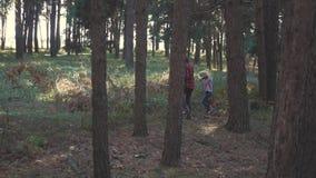 妈妈和小女儿在路去在家庭聚集在a的森林里采蘑菇和莓果的秋天森林里 股票视频