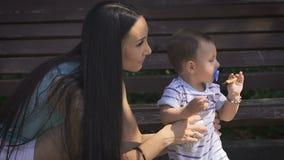妈妈和年轻男孩在公园,学习叶子的男孩 股票视频