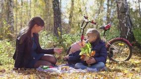 妈妈年轻家庭有孩子的一顿野餐的在公园在一晴朗的秋天天在自行车旁边坐 t 股票录像