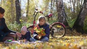 妈妈年轻家庭有孩子的变冷在一顿野餐在公园在一晴朗的秋天天 t 3840x2160 4K 股票视频