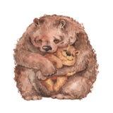 妈妈熊和婴孩熊 库存照片