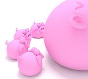 妈妈猪小猪 免版税库存照片