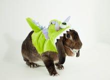 妖怪兔宝宝 免版税图库摄影