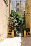 姆迪纳,马耳他,2014年7月  库存照片