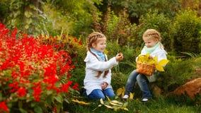 姐妹收集下落的叶子和蘑菇 免版税库存图片