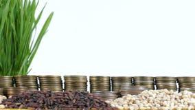 委内瑞拉沙文主义情绪与堆金钱硬币和堆麦子 影视素材