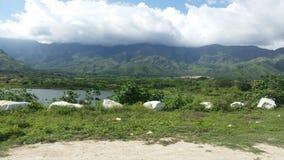 委内瑞拉的自然 库存图片