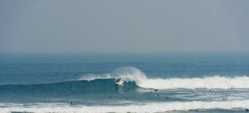 委员会冲浪者与马利布的骑马波浪 免版税库存照片