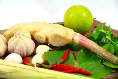 姜、高良姜、大蒜、青葱、非洲黑人石灰和辣椒 免版税库存照片