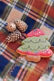姜曲奇饼和锥体圣诞树 库存图片