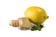 姜离开柠檬薄荷根 库存图片