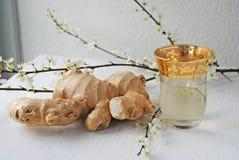 姜茶有益于健康和口味 免版税库存图片