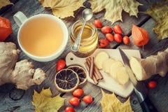 姜茶,蜂蜜,姜根,烘干了柠檬切片 免版税库存照片