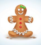 姜饼人装饰了色的结冰 在形状的假日曲奇饼  定性传染媒介例证为新年s天 免版税库存图片