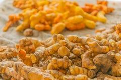 姜,姜黄根, Cassumunar姜,孟加拉根,姜科,烘干的姜黄 地方食物和泰国草本在泰国 库存图片