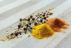 姜黄、胡椒、芥末和黑种子 免版税图库摄影