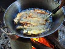 姜黄油煎的鲭鱼 图库摄影
