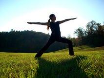 姿势战士瑜伽 免版税图库摄影