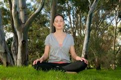 姿势siddhasana瑜伽 库存图片