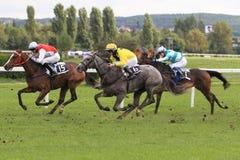 威利翁卡和熟食店在布拉格计划-赛马 免版税库存图片