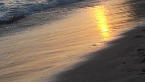 威基基岸日落的 库存图片