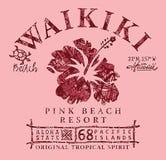 威基基海滩夏威夷部族木槿 库存图片