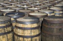 威士忌酒桶 免版税库存照片