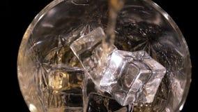 威士忌酒涌入了玻璃 股票视频
