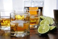 威士忌酒用姜汁无酒精饮料和石灰 库存照片