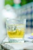 威士忌酒玻璃 库存图片