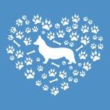 威尔士小狗在背景的彭布罗克角剪影的好的图片 免版税图库摄影