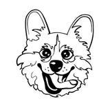 威尔士小狗狗的逗人喜爱的传染媒介例证 免版税库存图片