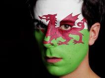 威尔士的旗子 库存图片
