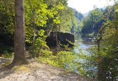 威尔逊小河风景 免版税库存照片