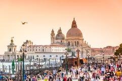 威尼斯、意大利、大运河和大教堂圣玛丽亚della向致敬 免版税库存照片