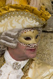 威尼斯式狂欢节的屏蔽 库存照片