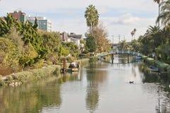 威尼斯有小船、桥梁和棕榈树的海滩运河 免版税图库摄影