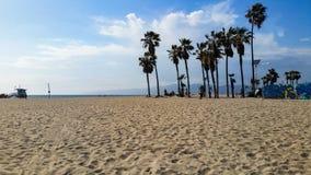 威尼斯海滩与遥远的暴风云的棕榈树 库存照片