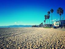 威尼斯海滩美丽的海滩与棕榈树的 库存照片