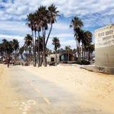 威尼斯海滩肌肉海滩 库存照片