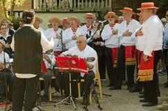 威尼斯节日的民歌手 免版税图库摄影