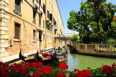 威尼斯运河红色开花意大利 库存照片