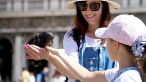 威尼斯,意大利- 2018年7月7日:观点的愉快的妇女和孩子女孩,游人,拿着鸽子,哺养,使用与他们 股票视频
