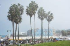 威尼斯,我们10月5日2014年:走沿威尼斯海滩的顾客 免版税库存图片