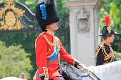 威廉王子,进军颜色,伦敦,英国, - 2017年6月17日;进军的威廉王子和安妮公主颜色游行  免版税图库摄影