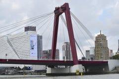 威廉斯桥梁,鹿特丹,荷兰 免版税库存图片